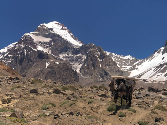 Aconcagua, here we come...