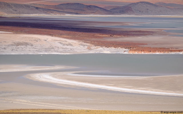 Salar de Aguas Calientes