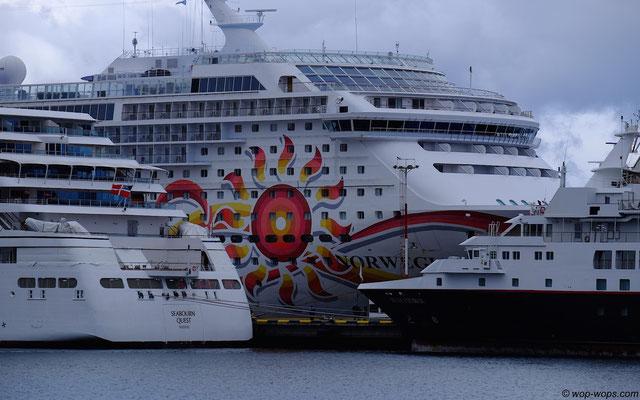 Cruise Ship Armada