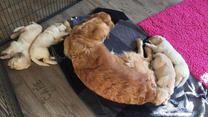 Dina und ihre Kinder beim  Mittagsschlaf