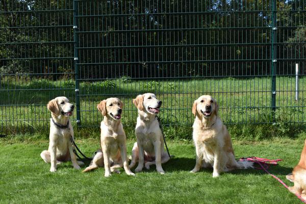 Tante Fanni mit Pablo, Bella und Mayla von links nach rechts