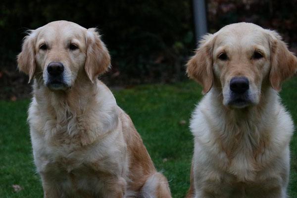 Fanni und Maisie, manchmal leicht zu verwechseln
