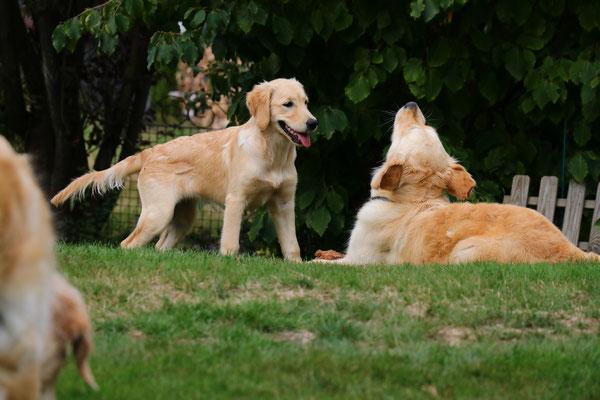 Maisie und Bella - hatten richtig Spaß