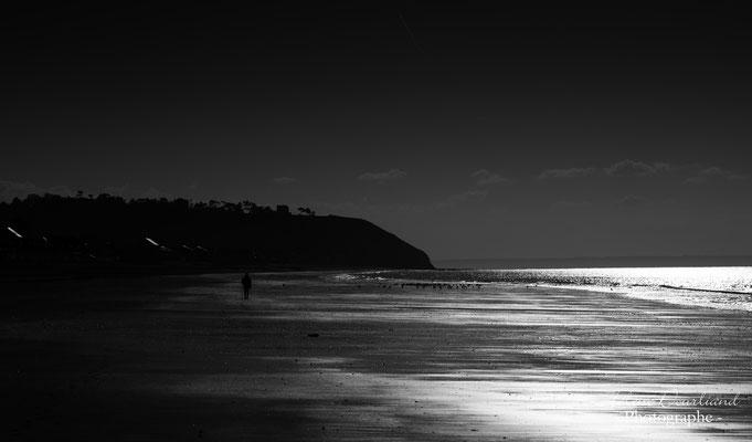 photo paysage en bord de mer en Normandie
