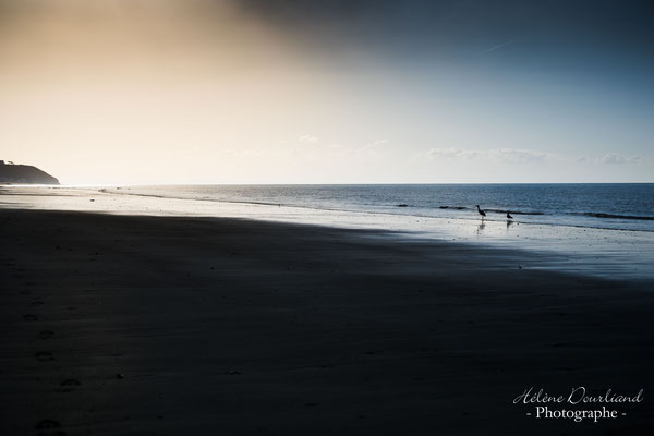photographie paysage normandie