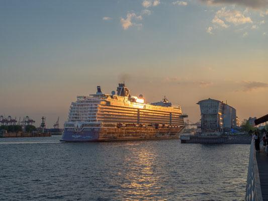 """""""Mein Schiff 1"""" im Abendlicht am Cruise Center Altona"""