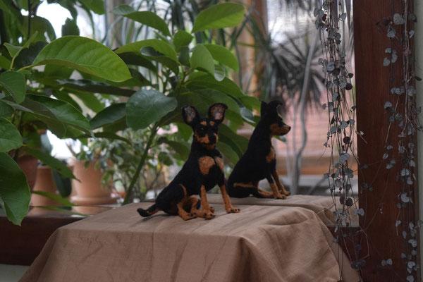 Prager Rattler Hund