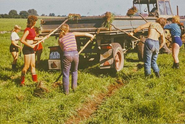 Ferien 1973: Nach der 9. und 10. Klasse wurde zeitweise ein Lager für Erholung und Produktion durchgeführt