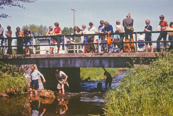 1977: An der Radegast bei Holdorf wurde die Fließgeschwindigkeit und Durchflussmenge des Wasers gemessen.