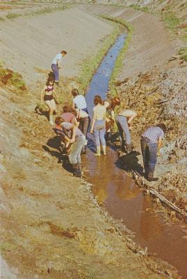 Ferien 1973: Das Lager für Erholung und Produktion wurde häufig in der Melioratoin durchgeführt. Hier arbeiten Schüler nach der 9. Klasse in dem Bürgermeister-Graben vor Rehna.