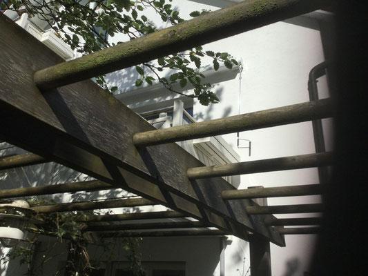 Holzkonstruktionen pflegen und Reinigen