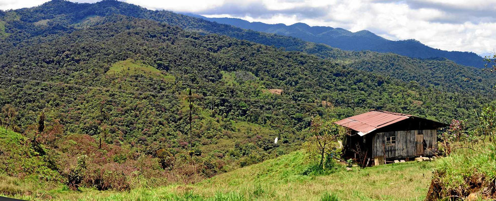 Blick auf den Nationalpark Cayambe Coca.