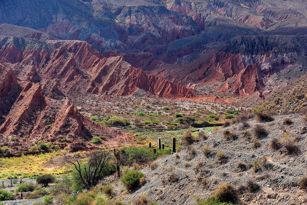 Fahrt durch das Valles Calchaquies.