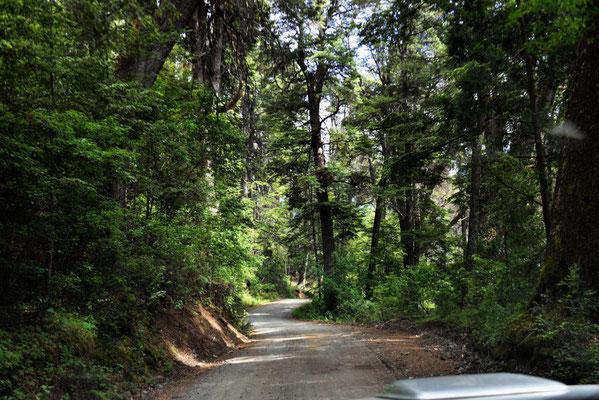 Die Einbahnstraße zum donnernden Berg.