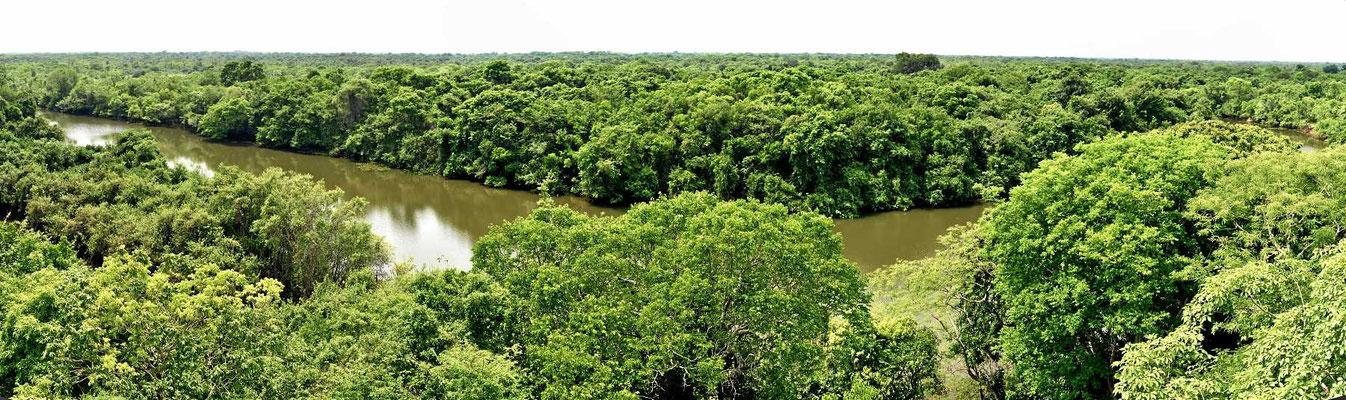 Der Rio ist eigentlich kein Rio, sondern ein Seitenarm, der mittlerweile keine Verbindung zum Fluss mehr hat.