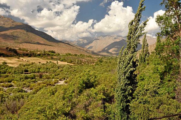Das Tal des Rio Hurtado, eine grüne Oase in der Wüste.