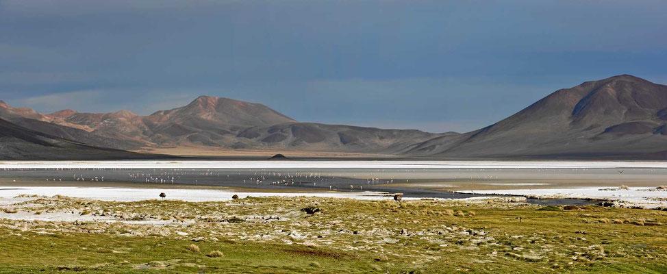 Wir können nicht genug bekommen vom Salzsee und den umgebenden Bergen.