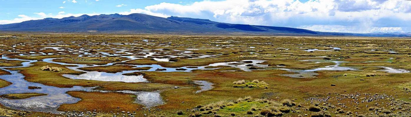 Eine Sumpflandschaft in der Reserva Nacional Y Aguada Blanca.