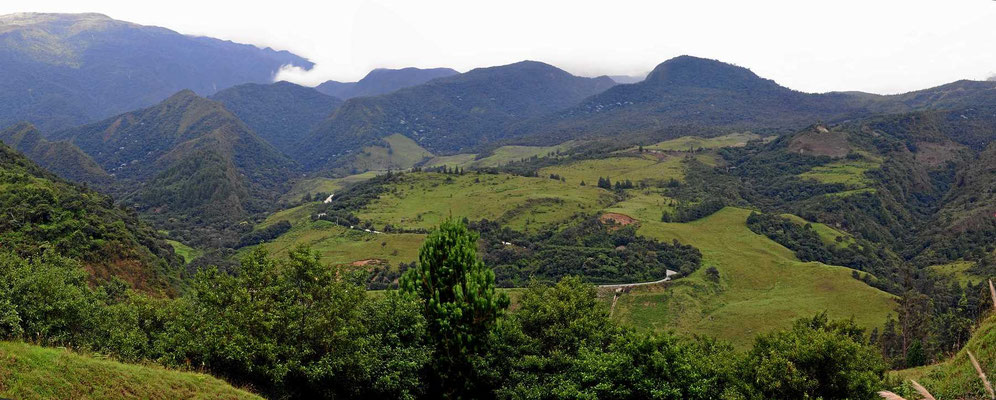 Das südliche zentrale Hochland am Rand des Nationalparks Podocarpus.