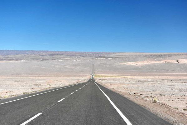 Wir fahren wieder durch die vegetationslose Atacama-Wüste.