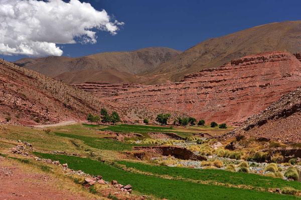 Das Valles Calchaquies ist durch den Fluss sehr grün und hat rundherum tolle farbige Felsfomationen.