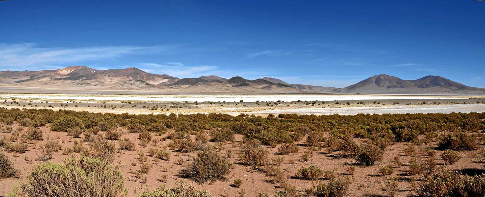 Der Salar de Huasco grüßt von der Ferne.