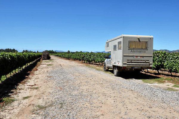 Wir sind im Weinparadies, hier wachsen laut Eigenwerbung die besten Weine der Welt.
