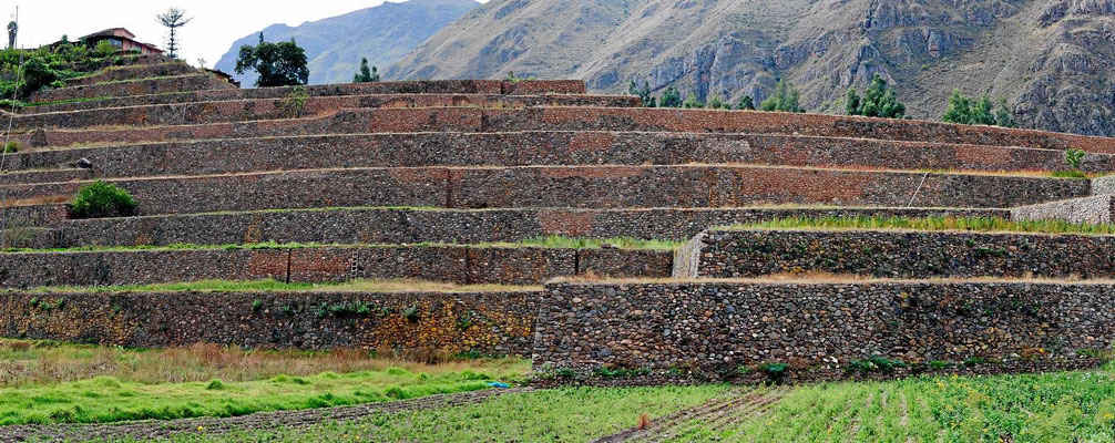 Wunderbare Terrassenlandschaft der Incas.