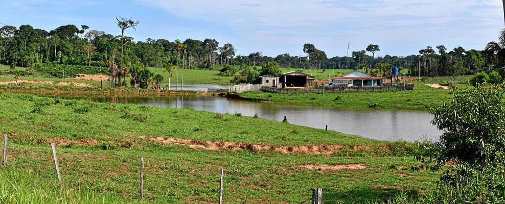 Manchmal ist es ein schönes Leben als Rancher in Brasilien.
