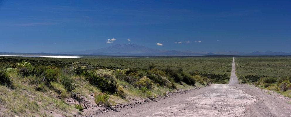 Fahrt durch die Pampa, am Horizont liegt der Salzsee Salar del Diamante.