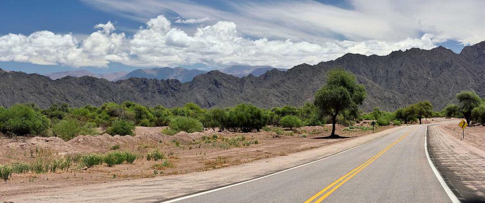 Andenlandschaft in der Nähe von Fiambala.