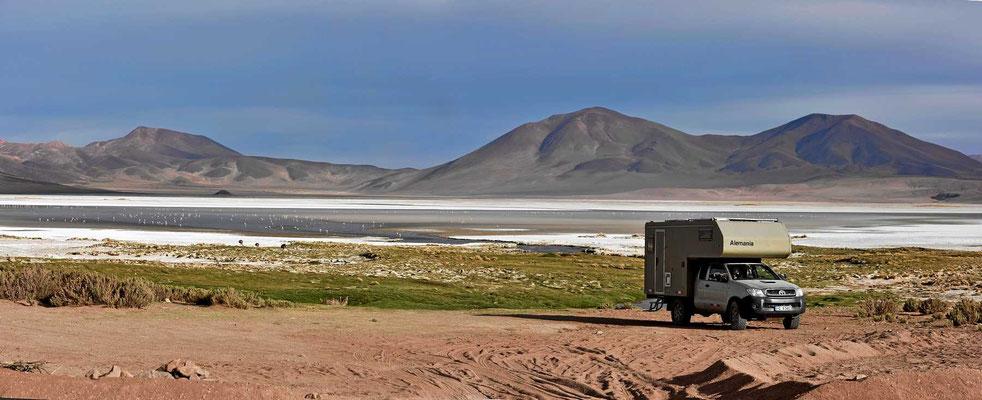 Unser Übernachtungsplatz am Salar de Huasco.