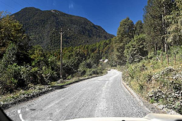 Typischer Andenstrecke auf Gravelroad, viel Wald um uns herum.
