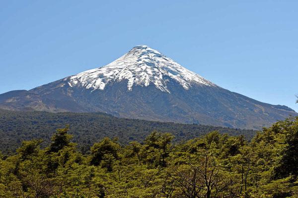 Der Osorno beherrscht die Landschaft.