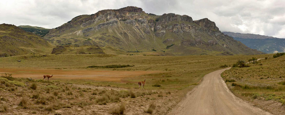 Fahrt durch den Park Patagonia.