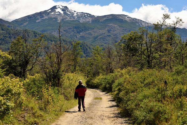 Wanderung Richtung Gletscher, bald ist aber Schluss, alles ist privado und man benötigt eine Genehmigung für den weiteren Weg.