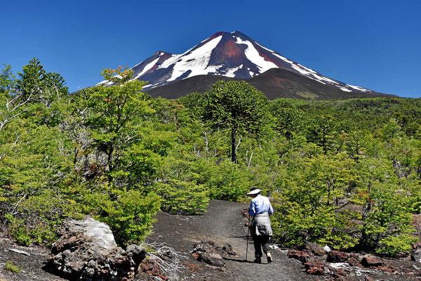 Der Vulkan Llaima