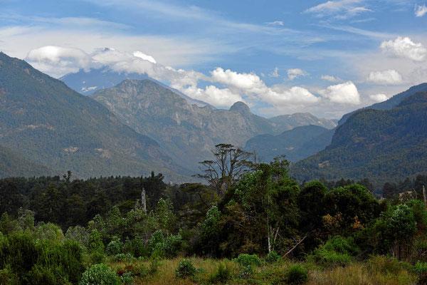 Fahrt durch den Nationalpark Villarrica, Sektion Lanin.