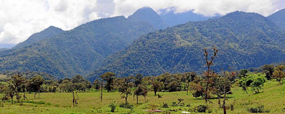 Wir fahren entlang des Cayambe Coca Naturschutzgebiets.Leider ist der (wie bei den anderen Nationalparks) kaum zugänglich, zumindest nicht per Auto.