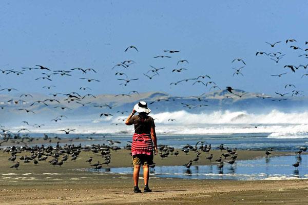 Und wenn Marion darauf zugeht, ist der Himmel voller Vögel.