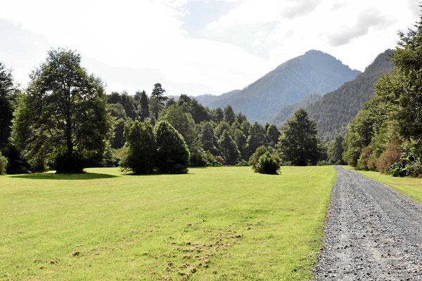 Schönste Parklandschaft im Nationalpark.
