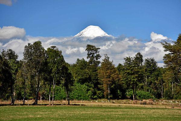 Blick auf den Bilderbuchvulkan Osorno.