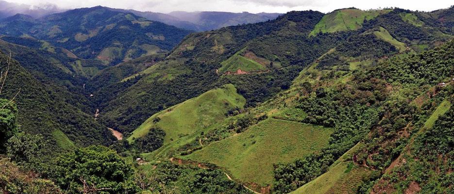 Und immer wieder Blicke auf eine tolle Landschaft. Hier wohnt fast niemand, trotzdem sind viele Wälder abgeholzt.