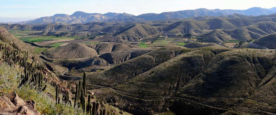Auf dem Weg nach Arequipa kommt man wieder in die peruanische Küstenwüste mit bewässerten Oasen.