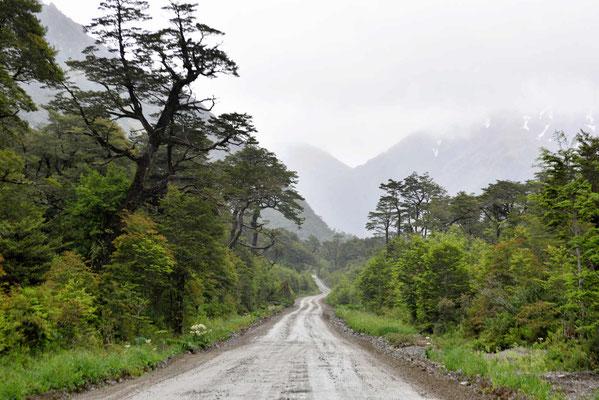 Es regnet im Nationalpark.