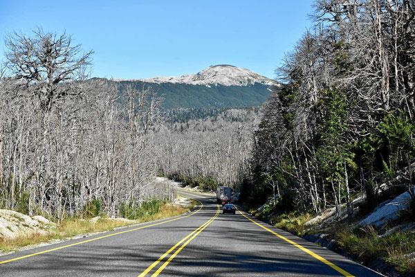 Tote Bäume und Asche bis hoch in die Berge.