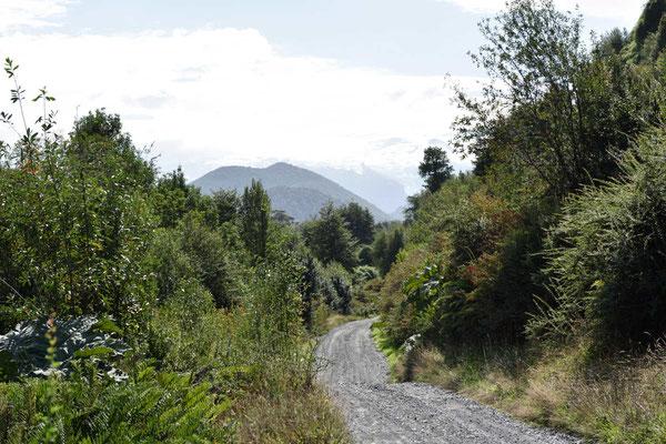 Der Weg zum Campingplatz ist eng. Aber solange keiner entgegenkommt,macht das nichts.
