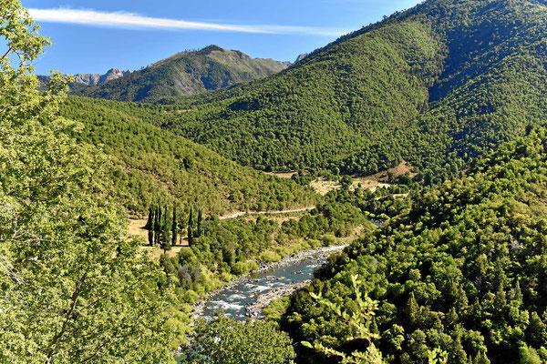 Es ist ein reizvolles Flusstal, kaum besiedelt. Aber trotzdem ist alles zugezäunt, man kann die Piste nicht verlassen.