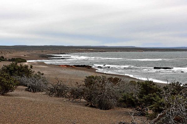 Der Strand von Punta Tombo, leider jetzt total leer.