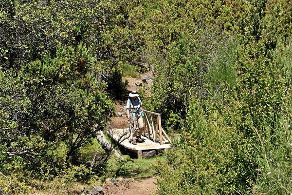 In den Parks versuchen wir, jeden Tag zumindest eine Wanderung zu machen. Außerhalb der Parks gibt es praktisch keine Wanderwege, deshalb sitzen wir zu viel im Womo.